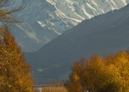 Cycling beneath Mt Cook