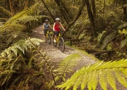 West Coast Cycle trail